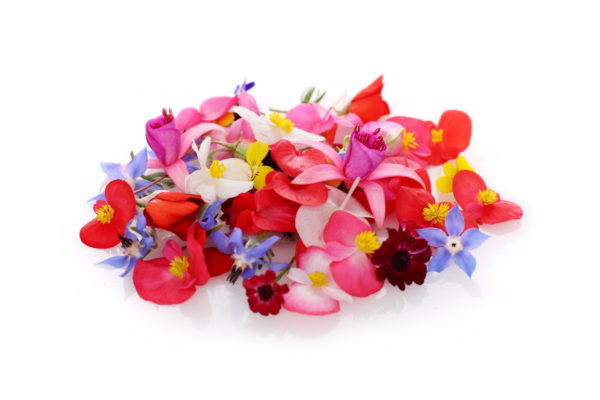 Mix flori comestibile