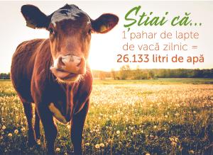 1 pahar de lapte de vaca zilnic = 26133 litri de apa
