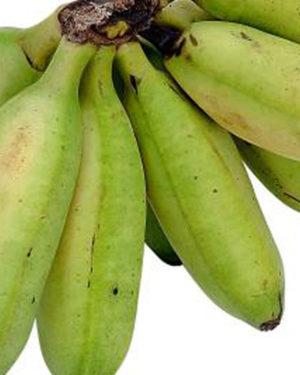 Banane pentru gatit Matoke Bio Uganda ~ 500 gr