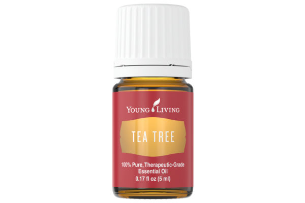 Ulei esențial Tea Tree ( Melaleuca Alternifolia ) Young Living 5 ml