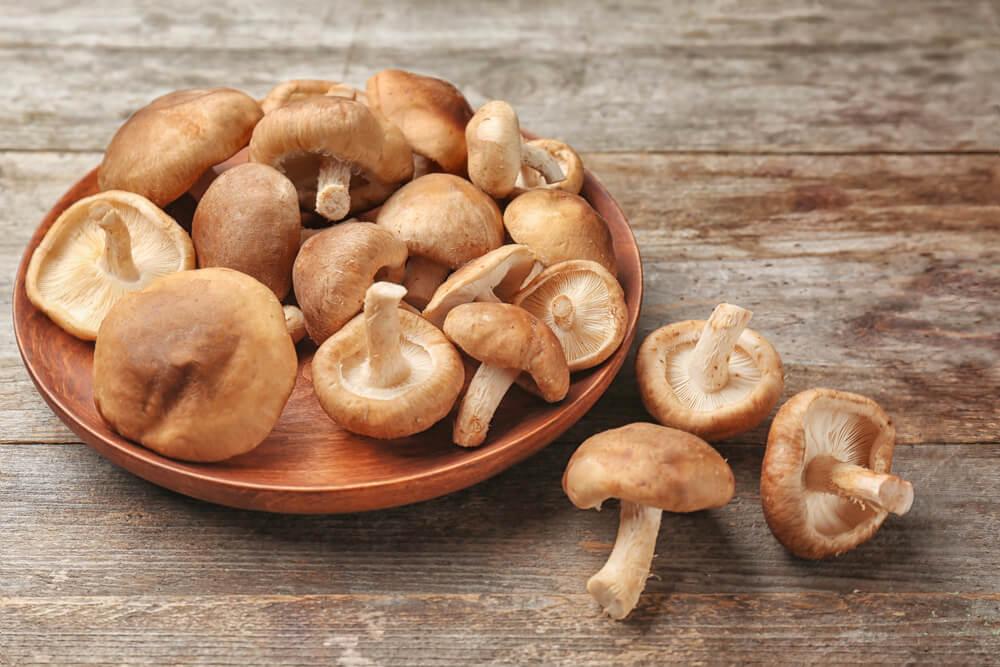 ciuperci inlocuitor de succes al carnii